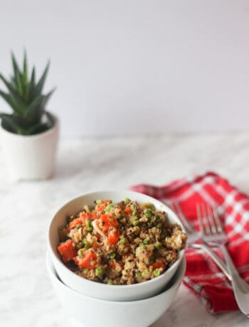Quinoa fried rice in a white bowl, plant in the background and red serviette